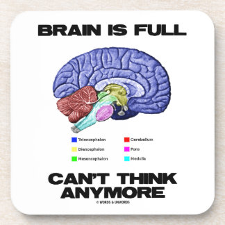 Brain Is Full Can't Think Anymore (Brain Anatomy) Coasters