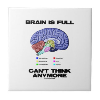 Brain Is Full Can't Think Anymore (Brain Anatomy) Ceramic Tiles