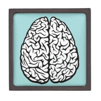 Brain Jewelry Box