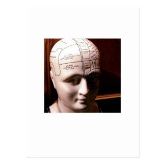 brain.jpg tarjetas postales