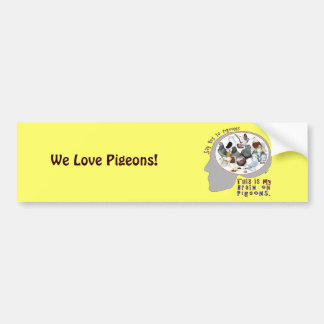 Brain On Pigeons Car Bumper Sticker