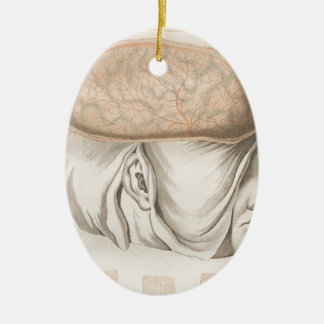 Brain One - Neuroanatomy Ceramic Ornament