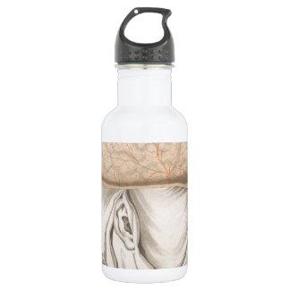 Brain One - Neuroanatomy Water Bottle