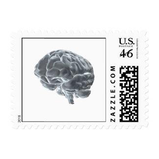 brain postage