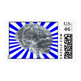 brain postage stamp