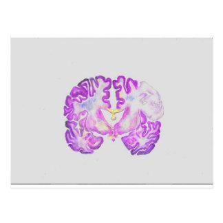 Brain Postcard