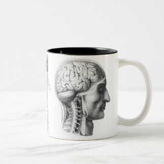 brain revealed Two-Tone coffee mug
