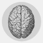 Brain Round Stickers