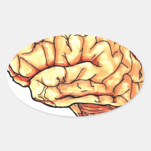 Brain series oval stickers