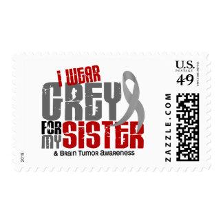 Brain Tumor I Wear Grey For My Sister 6.2 Postage Stamp