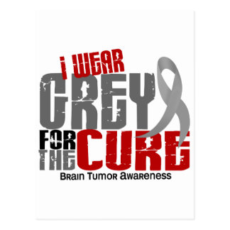 Brain Tumor I Wear Grey For The Cure 6.2 Postcard