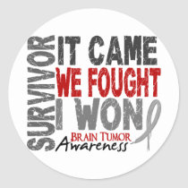 Brain Tumor Survivor It Came We Fought I Won Classic Round Sticker