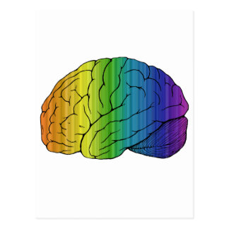 Brainbow Postal