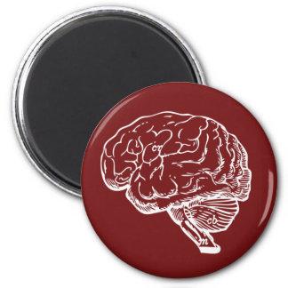 Brainiac Magnet