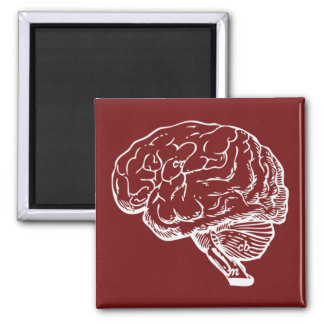 Brainiac Refrigerator Magnets
