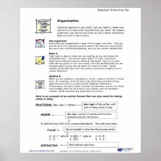 Brainology® Poster4: Organization Poster