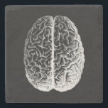 "Brains! Stone Coaster<br><div class=""desc"">A modified version of a vintage scientific illustration of the human brain</div>"
