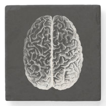 Brains! Stone Coaster