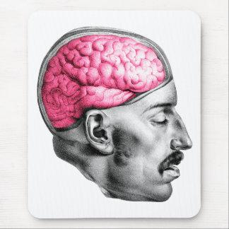 Brains Vintage Medical Illustration Mouse Pad