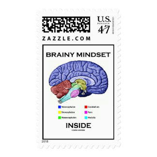 Brainy Mindset Inside (Anatomical Brain) Postage