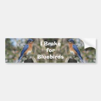 Brake for Bluebirds Bumper Sticker