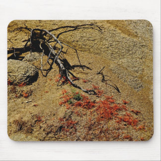 BRANCH AND RED SPRING FLOWERS IN THE DESERT MOUSE PAD