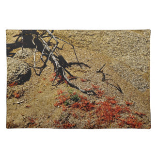 BRANCH AND RED SPRING FLOWERS IN THE DESERT PLACE MAT