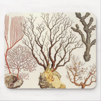 Branch Coral Nautical Beach Decor Mouse Pad