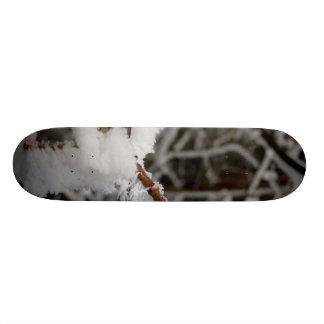 Branch in Frost Skateboard Deck