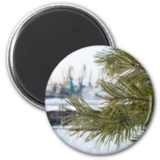 Branch of a pine on blurred background industrial 2 inch round magnet