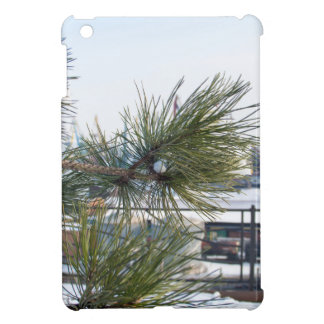 Branch of a pine on blurred background industrial cover for the iPad mini