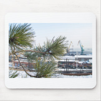 Branch of a pine on blurred background industrial mouse pad