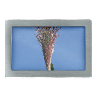 Branch of Giant reed plant with flower Rectangular Belt Buckle