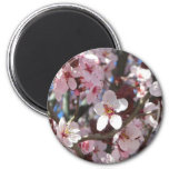 Branch of Pink Blossoms Spring Flowering Tree 2 Inch Round Magnet