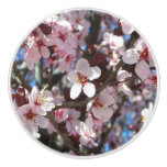 Branch of Pink Blossoms Spring Flowering Tree Ceramic Knob