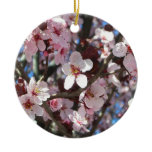 Branch of Pink Blossoms Spring Flowering Tree Ceramic Ornament