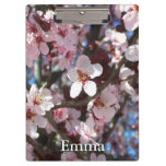 Branch of Pink Blossoms Spring Flowering Tree Clipboard