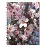 Branch of Pink Blossoms Spring Flowering Tree Notebook