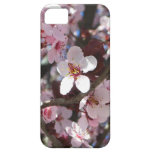 Branch of Pink Blossoms Spring Flowers iPhone 5 Covers