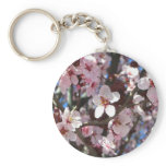 Branch of Pink Blossoms Spring Flowers Basic Round Button Keychain