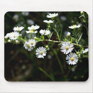 Branch of white flowers with yellow center mouse pad