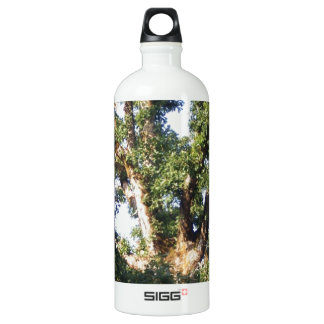 Branches Against the Sky Aluminum Water Bottle