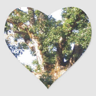 Branches Against the Sky Heart Sticker