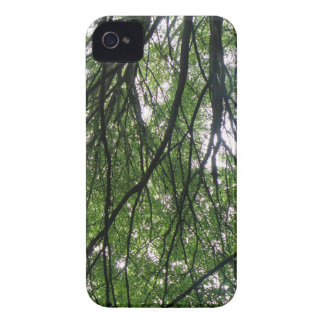 Branches and Leaves Blackberry Bold Case