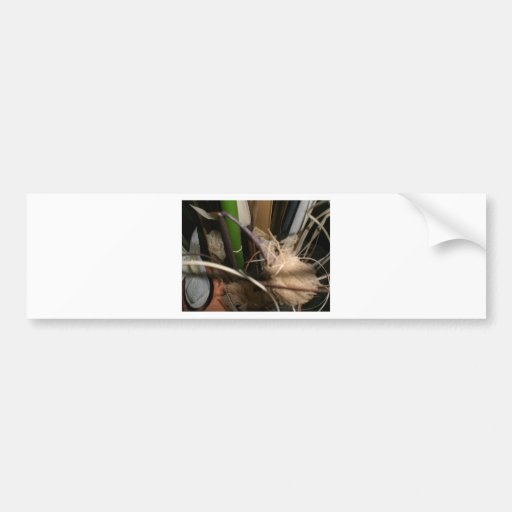 Branches and Leaves Bumper Stickers
