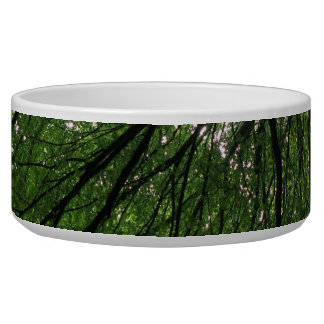 Branches and Leaves Dog Bowl