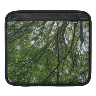 Branches and Leaves IPad Sleeve
