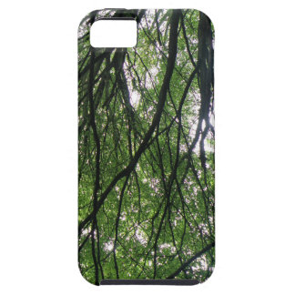 Branches and Leaves iPhone 5 Case