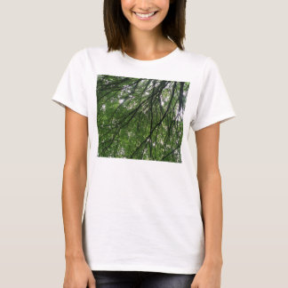 Branches and Leaves Ladies T Shirt