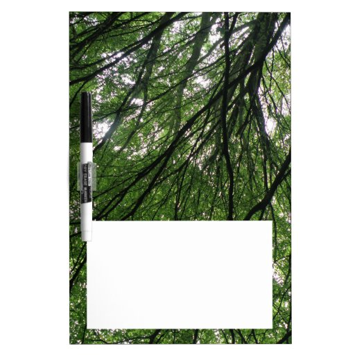 Branches and Leaves Memo Board Dry-Erase Whiteboard